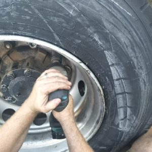 Truck Tyre at Cunungra